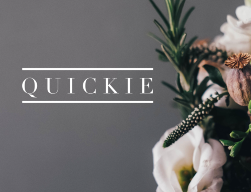 Quickie 4